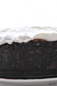 Mississipi Mud cake: una torta tutta da scoprire