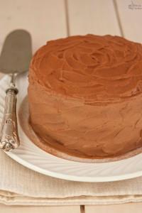 Torta al cioccolato e vaniglia