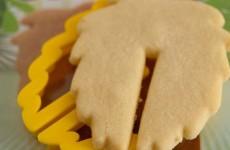 biscotti 3D sli