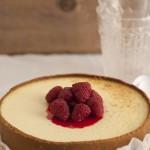 new york cheesecake 0033